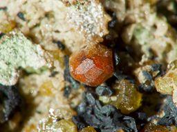 Granatkristall aus einem Skarn